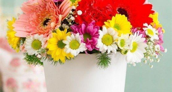 Doğum Çiçekleri Fiyatları