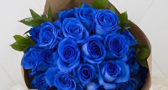 Çiçeklerin Aşk Dilinde Anlamları
