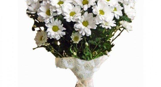 Mayıs Ayının Popüler Çiçekleri